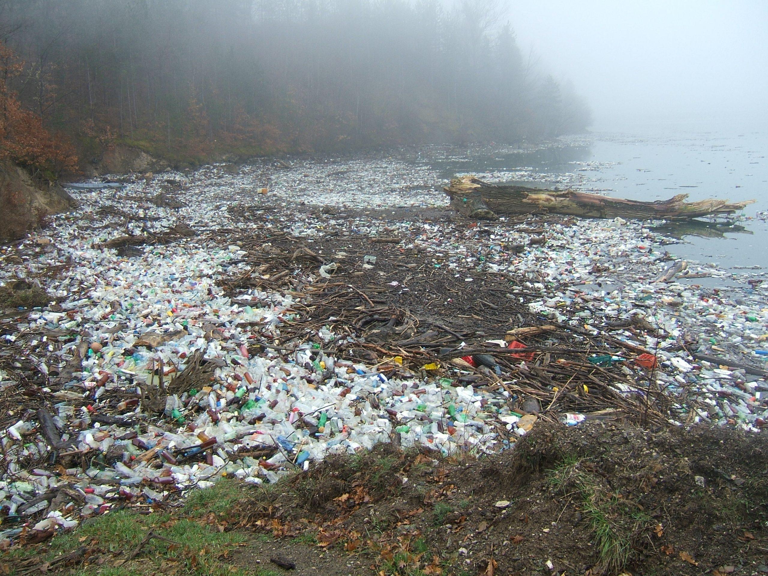 Wat is de impact van plastic?